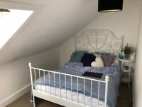Looking for a Quiet Flatmate Girl to share the flat