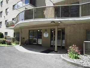 Ideal for London students! Secure bachelor apartment for rent London Ontario image 12