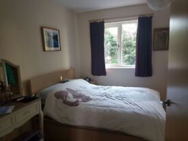 Lovely double room available 1st August- 20th September
