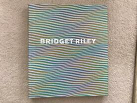 Bridget Riley - her life and work