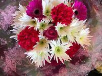 Daisy chains florist