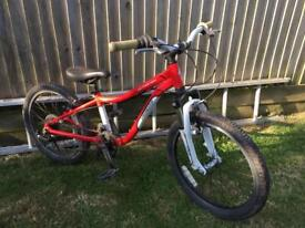 Specialized Hot Rock 20""