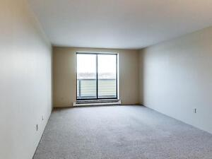 Spacious 2 bedroom, 2 bathroom apartment for rent in Kingston Kingston Kingston Area image 4