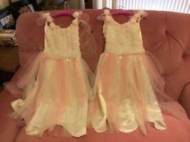 Snow rose fairy dress