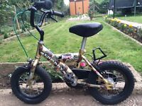 """KIDS BOYS GIRLS COMBAT BUMPER 12.5"""" WHEEL AGES 3-7 WITH STABILISERS BIKE BICYCLE"""