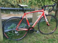 2012 Specialized Allez Double Compact Road Bike Large 56Cm Red - White