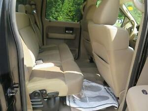 2008 Ford F-150 Cambridge Kitchener Area image 16