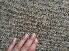 Big carpet 28 square meters