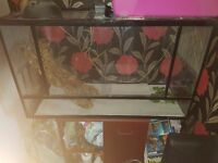 Large Vivarium. Can Be Used For All Different Types Of Animals.
