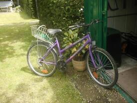 GIRLS/LADIES BICYCLE £15