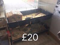 Double rabbit indoor cage