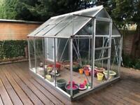 Large walk in greenhouse