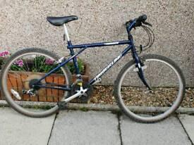 Classic Gt mountain bike