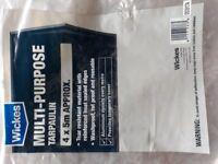 Heavy Duty Plastic Cover- Tarpaulin