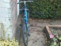 """Giant 26"""" bike"""
