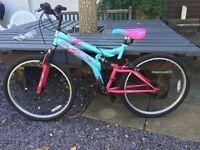 Ladies Cycle Bike