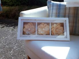 Beautiful dried flowers in glass fronted box pictures
