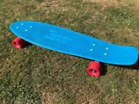 Skateboard. Pennyboard