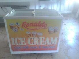 4ft x 2ft freezer