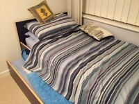 single bed with guest bed/storage under