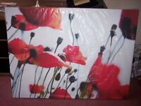 Picture (Poppies)