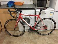Avenir By Raleigh Aspire Road Bike