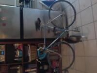 Torpado blue and Crome racing bike made in Italy all new parts