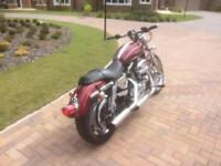 Harley Davidson XL1200C Sportster 2003 8000 miles