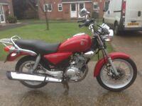 Yamaha ybr custom 1 owner low mileage