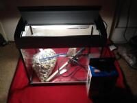 Aqua 20 silver tropical fish tank full set up £30