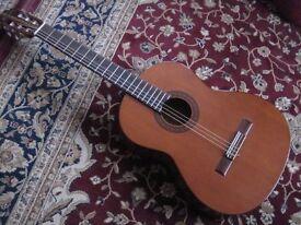 Hokada Acoustic Guitar Model 3161