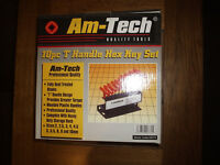 Am Tech 10 Piece Handle Hex Set (NEW)