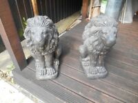Solid Stone Sitting Lions