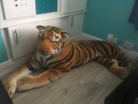 Very Large Tiger - Soft Toy, Cuddly Toy