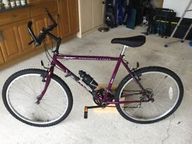 Coventry Eagle Ventura 15 Gear Bicycle