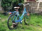 700c Pendleton Dutch style Ladies bike