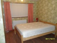 Double room available for a female in 3 bedroom house 5 minutes wallking to victoria centre.