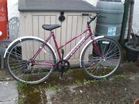 Ladies Raleigh Classic Pioneer Bicycle
