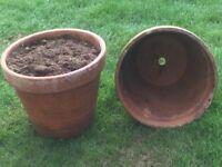 Terracotta garden planters ( 9 identical)