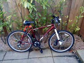 Ladies Bicycles £50 each