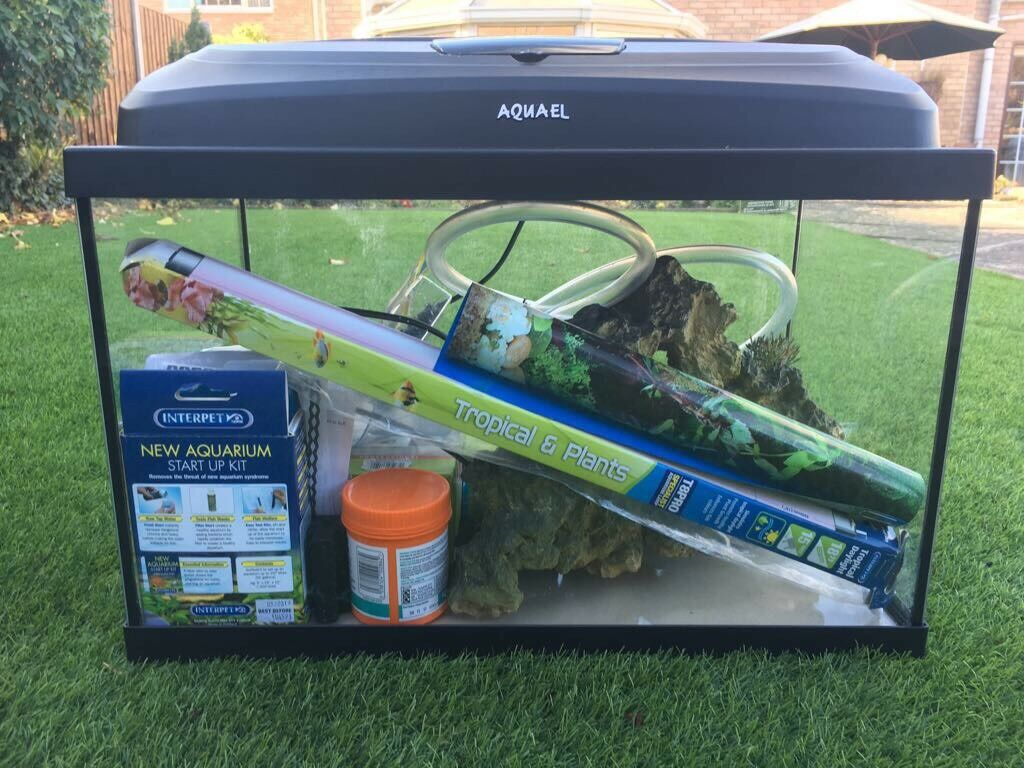 Tropical Fish Tank Package
