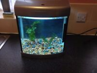 AQUA-40 fish tank with built in blue and white light,28 litres,gravel and plastic plants,good clean