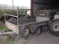 Ifor William trailer GD105