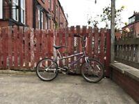 BMX - Freestyle Bike