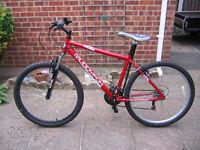 Adult Muddyzox Mountain Bike