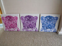 Snow Leopard Canvases (3)