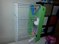 gentille lapine avec sa cage