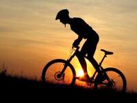 Mens Bike Mountain Bikes Hybrids Boardman Carrera Specialized Trek Scott GT Giant etc