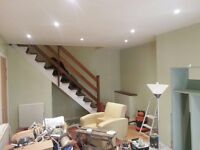 Painter and decorator plus plasterers