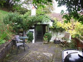 Semi-detached one bed apartment to rent, Braunton area